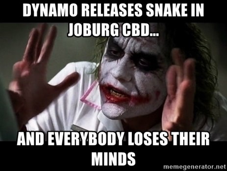 joker mind loss - Dynamo releases snake in joburg CBD... and everybody loses their minds