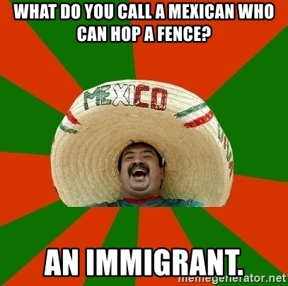 Successful Mexican - What do you call a Mexican who can hop a fence? An immigrant.