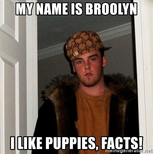 Scumbag Steve - My name is broolyn i like puppies, FACTS!