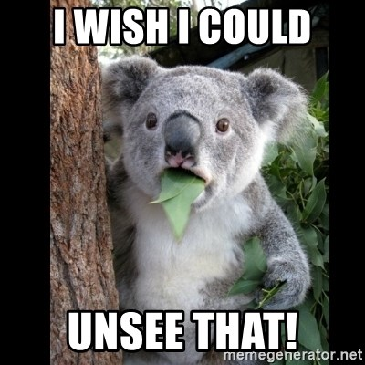 Koala can't believe it - i wish i could unsee that!