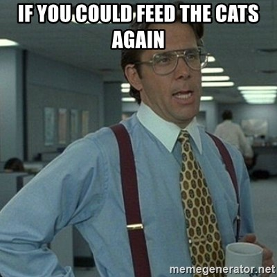 Yeah that'd be great... - if you could feed the cats again