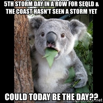 Koala can't believe it - 5th storm day in a row for SEQld & the coast hasn't seen a storm yet Could today be the day??