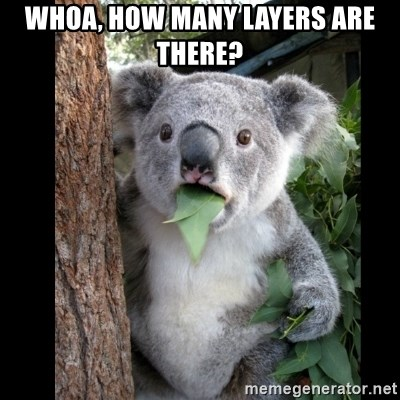 Koala can't believe it - whoa, how many layers are there?