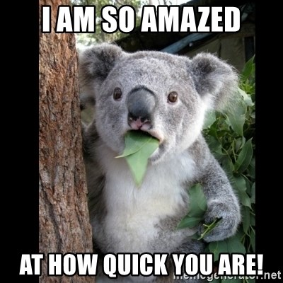 Koala can't believe it - I am so amazed At how quick you are!