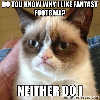 Grumpy Cat  - Do you know why i like fantasy football? neither do i