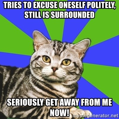 Introvert Cat - Tries to excuse oneself politely, still is surrounded Seriously get AWAY from me now!