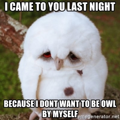 Sad Owl Baby - I came to you last night because i dont want to be owl by myself