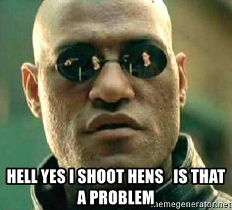What if I told you / Matrix Morpheus -  HELL YES I SHOOT HENS   IS THAT A PROBLEM