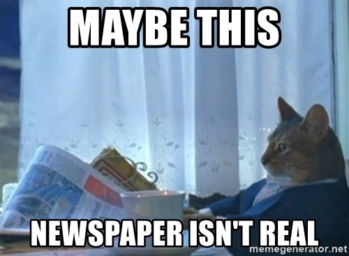 newspaper cat realization - maybe this newspaper isn't real