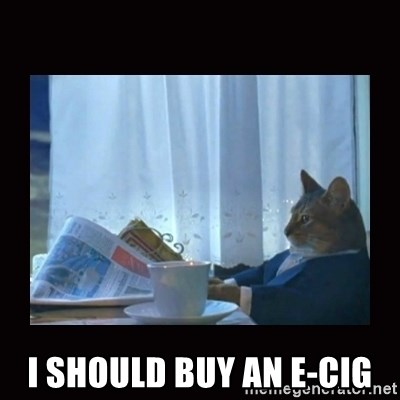 i should buy a boat cat -  I should buy an e-cig