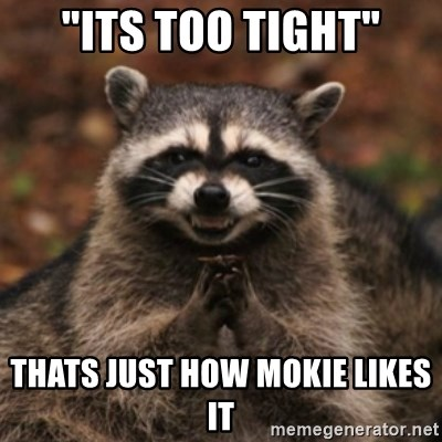 "evil raccoon - ""Its too tight"" thats just how mokie likes it"