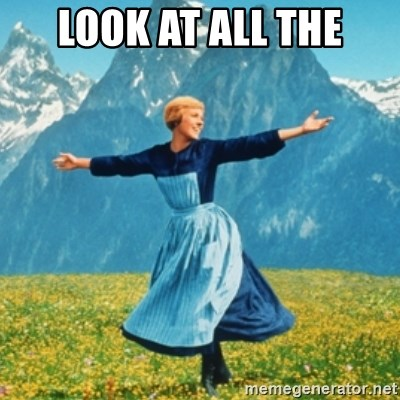 Sound Of Music Lady - look at all the