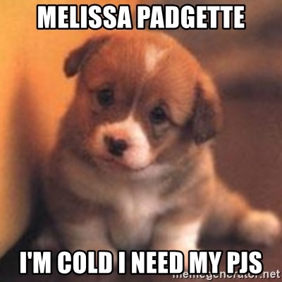 cute puppy - MELISSA PADGETTE I'm cold I need my pjs