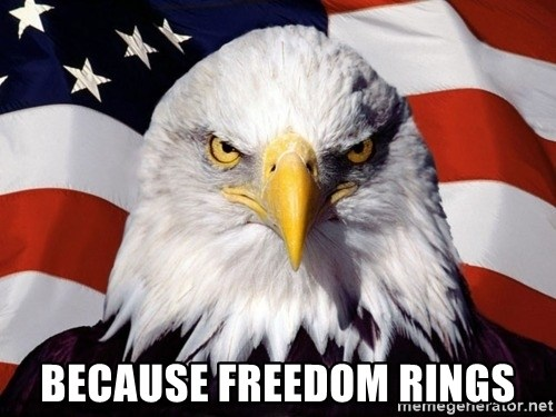 American Pride Eagle -  Because freedom rings