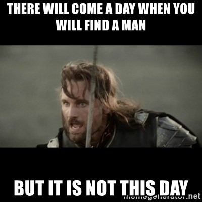 But it is not this Day ARAGORN - there will come a day when you will find a man but it is not this day