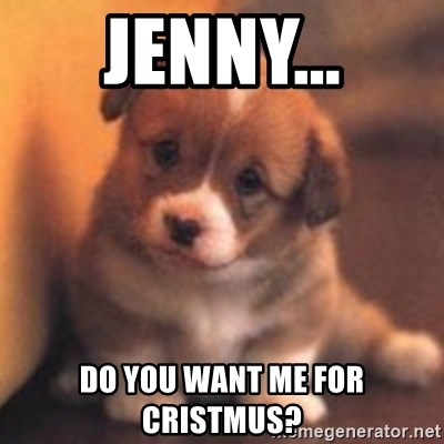 cute puppy - Jenny... Do you want me for Cristmus?