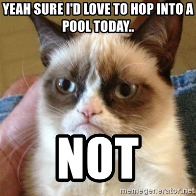 Grumpy Cat  - Yeah sure I'd love to hop into a pool today.. NOT