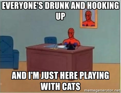 Spiderman Desk - everyone's drunk and hooking up and i'm just here playing with cats