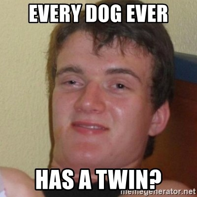Stoner Stanley - Every Dog Ever Has a twin?