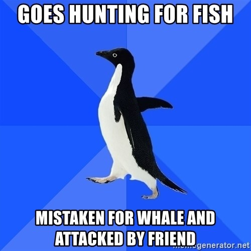 Socially Awkward Penguin - GOES HUNTING FOR FISH MISTAKEN FOR WHALE AND ATTACKED BY FRIEND