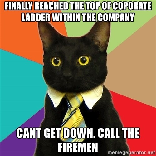 Business Cat - Finally reached the top of coporate ladder within the company cant get down. call the firemen