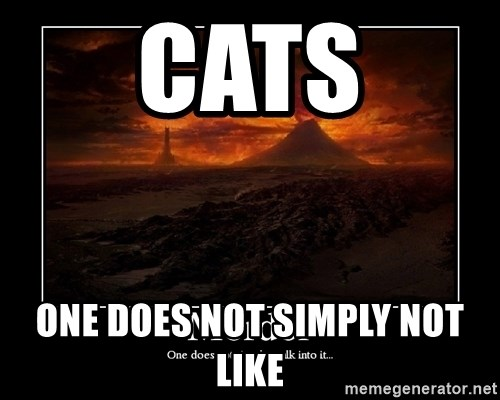 Lord Of The Rings Boromir One Does Not Simply Mordor - Cats One does not simply not like