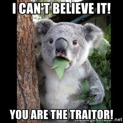 Koala can't believe it - i can't believe it! you are the traitor!