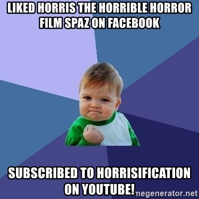 Success Kid - liked horris the horrible horror film spaz on facebook subscribed to horrisification on youtube!