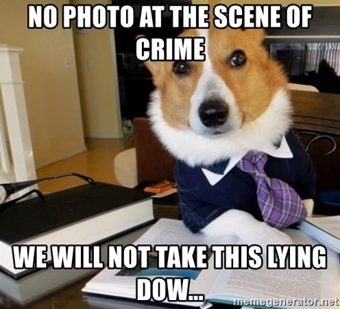 Dog Lawyer - No photo at the scene of crime We will not take this lying dow...