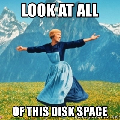 Sound Of Music Lady - Look at all  of this disk space