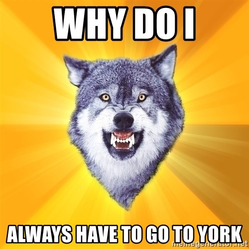 Courage Wolf - why do I always have to go to york