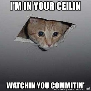 Ceiling cat - I'M in your ceilin watchin you commitin'
