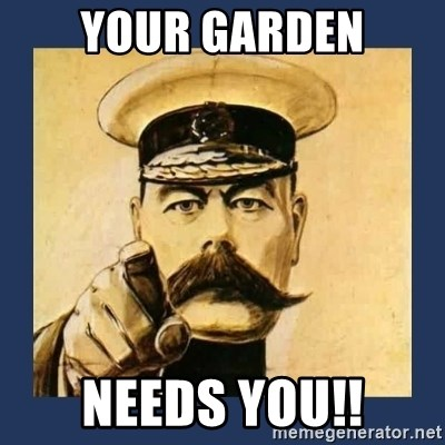your country needs you - your garden needs you!!