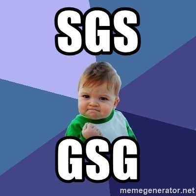 Success Kid - sgs gsg
