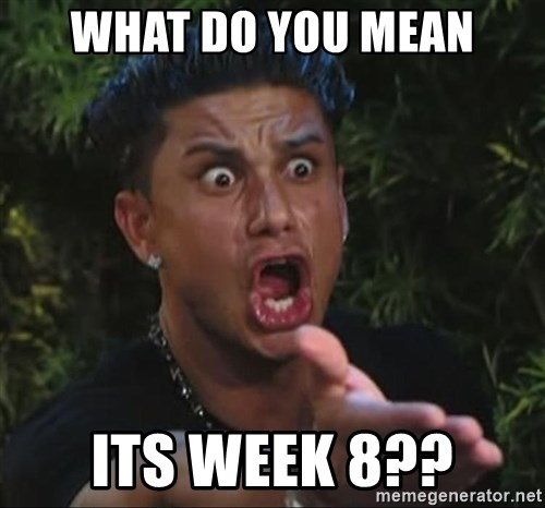 Pauly D - WHAT DO YOU MEAN ITS WEEK 8??