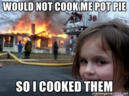 Disaster Girl - Would not cook me Pot Pie So I Cooked them