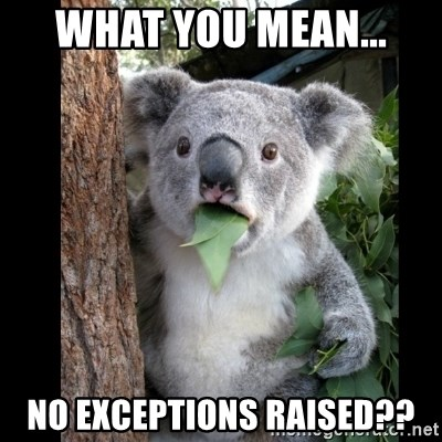 Koala can't believe it - what you mean... no exceptions raised??