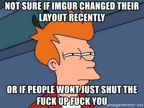 Futurama Fry - Not sure if imgur changed their layout recently or if people wont just shut the fuck up fuck you