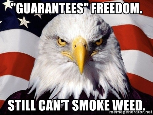 "American Pride Eagle - ""guarantees"" freedom. Still can't smoke weed."