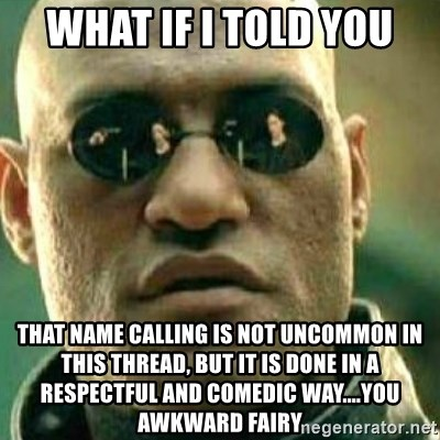 What If I Told You - What if i told you that name calling is not uncommon in this thread, but it is done in a respectful and comedic way....you AWKWARD fairy