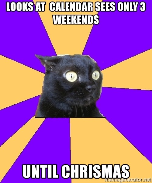 Anxiety Cat - looks at  calendar sees only 3 weekends until chrismas