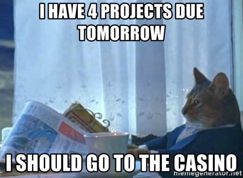 newspaper cat realization - I have 4 projects due tomorrow I should go to the casino