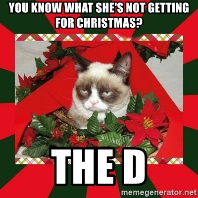 GRUMPY CAT ON CHRISTMAS - you know what she's not getting for christmas? the D