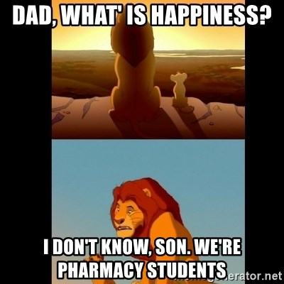 Lion King Shadowy Place - Dad, what' is happiness? I don't know, son. We're pharmacy students