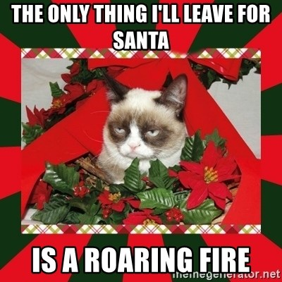 GRUMPY CAT ON CHRISTMAS - the only thing i'll leave for santa is a roaring fire