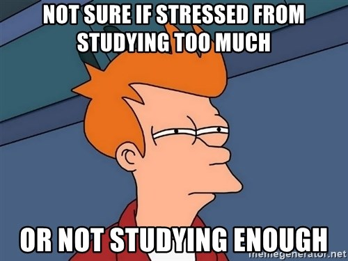 Futurama Fry - Not sure if stressed from studying too much or not studying enough