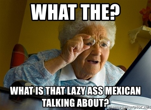 Internet Grandma Surprise - What the? What is that lazy ass mexican talking about?