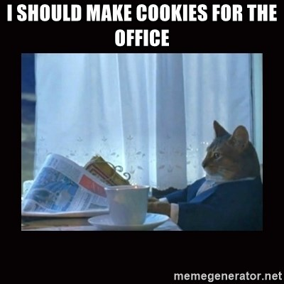 i should buy a boat cat - I should make cookies for the office