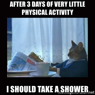 i should buy a boat cat - After 3 days of very little physical activity I should take a shower