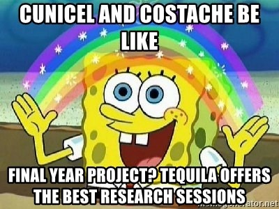 Imagination - Cunicel and costache be like  Final year project? Tequila offers the best research sessions